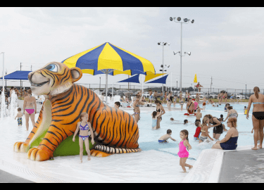 Kids and parents swimming in pool with a large orange tiger sculpture